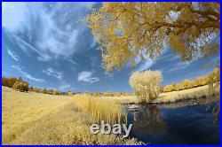 Nikon D3000 Infrared converted 590nm Digital IR infrared Camera. Super colour